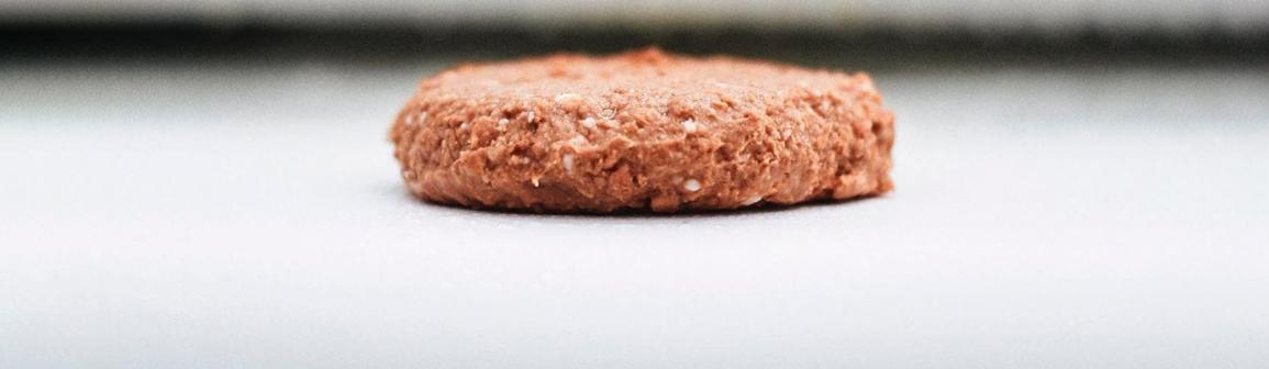 Hambúrguer vegetal representa inovação e diversidade de ofertas